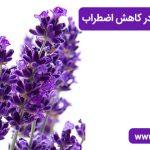 تاثیر اسطخودوس در کاهش اضطراب