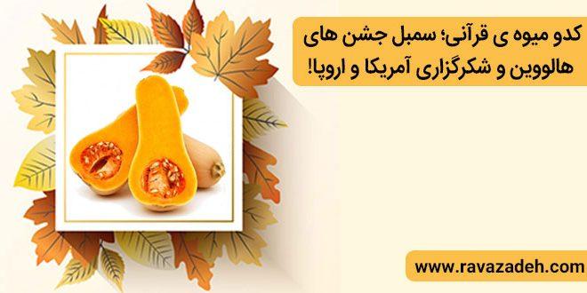 کدو میوه ی قرآنی؛ سمبل جشن های هالووین و شکرگزاری آمریکا و اروپا!