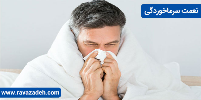 Photo of نعمت سرماخوردگی