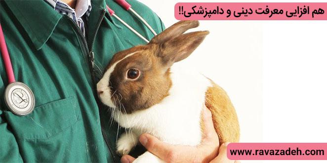 Photo of هم افزایی معرفت دینی و دامپزشکی!!