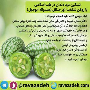 تسکین درد دندان در طب اسلامی با روغن شگفت آور حنظل (هندوانه ابوجهل)