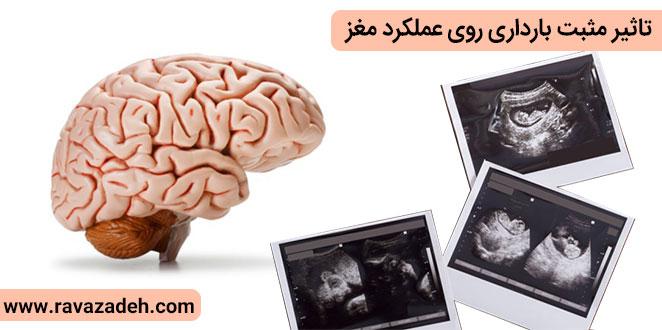 Photo of تاثیر مثبت بارداری روی عملکرد مغز