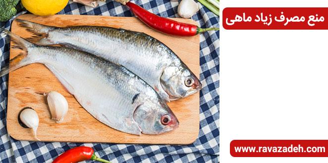 Photo of منع مصرف زیاد ماهی