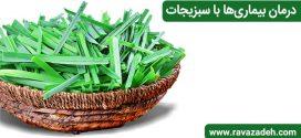 درمان بیماریها با سبزیجات