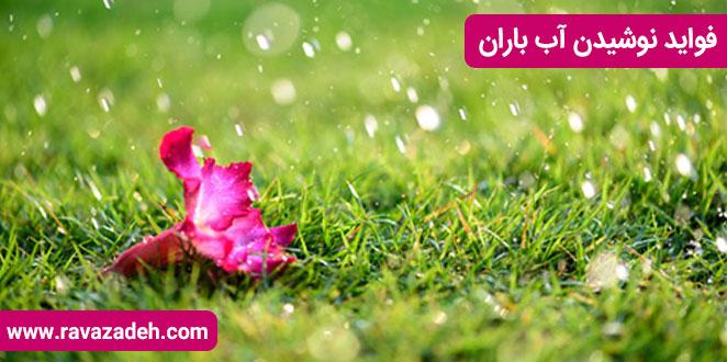 Photo of فواید نوشیدن آب باران