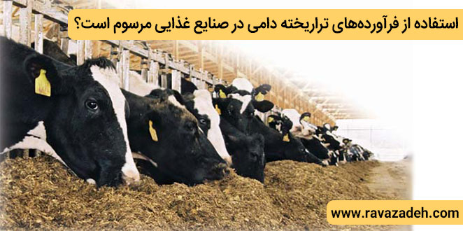 Photo of استفاده از فرآوردههای تراریخته دامی در صنایع غذایی مرسوم است؟
