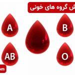 چگونگی پیدایش گروه های خونی
