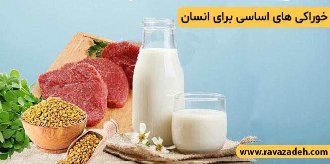 Photo of خوراکی های اساسی برای انسان