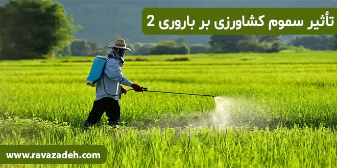 تأثیر سموم کشاورزی بر باروری – بخش دوم