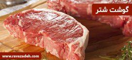 گوشت شتر