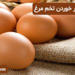 پرهیز از افراط در خوردن تخم مرغ