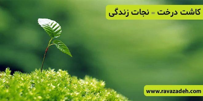 کاشت درخت = نجات زندگی