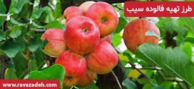 طرز تهیه فالوده سیب