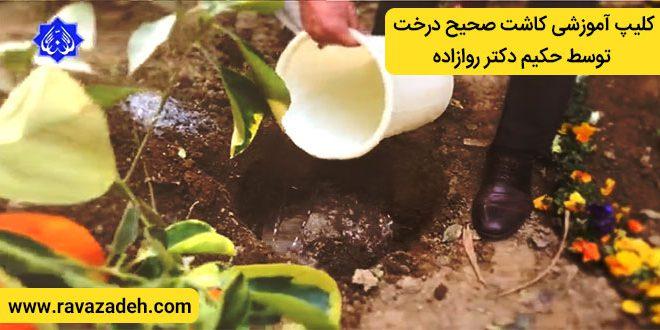 کلیپ آموزشی کاشت صحیح درخت توسط حکیم دکتر روازاده