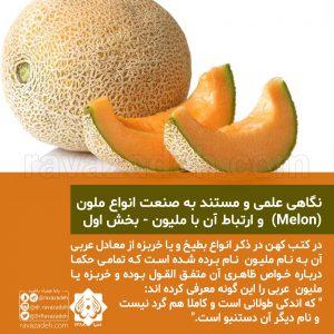 نگاهی علمی و مستند به صنعت انواع ملون (Melon) و ارتباط آن با ملیون - بخش اول