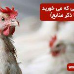 آیا می دانید مرغی که می خورید چیست؟ (با ذکر منابع)