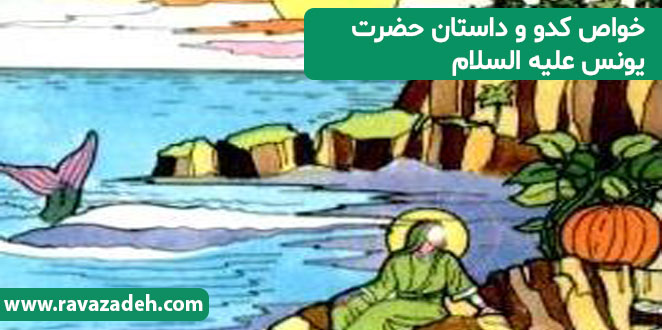 Photo of خواص کدو و داستان حضرت یونس علیه السلام