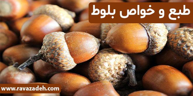 Photo of طبع و خواص بلوط