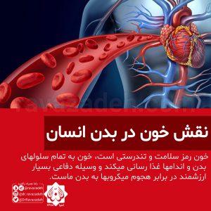 نقش خون در بدن انسان