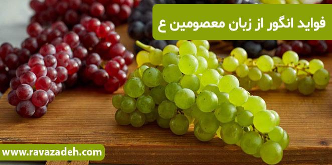 Photo of فواید انگور از زبان معصومین ع