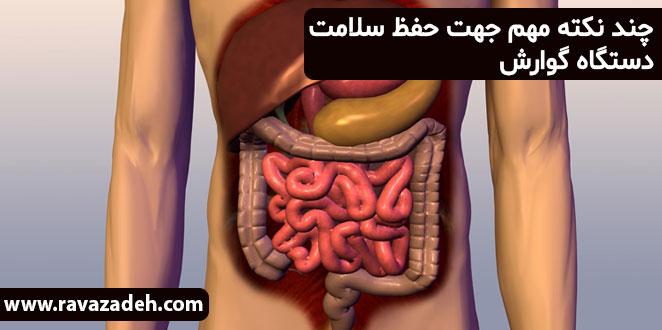 Photo of چند نکته مهم جهت حفظ سلامت دستگاه گوارش