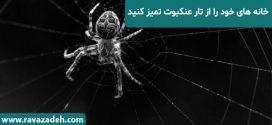 خانه هاى خود را از تار عنکبوت تمیز کنید