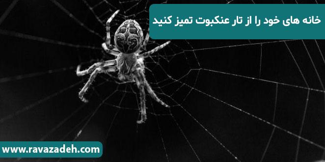 Photo of خانه هاى خود را از تار عنکبوت تمیز کنید