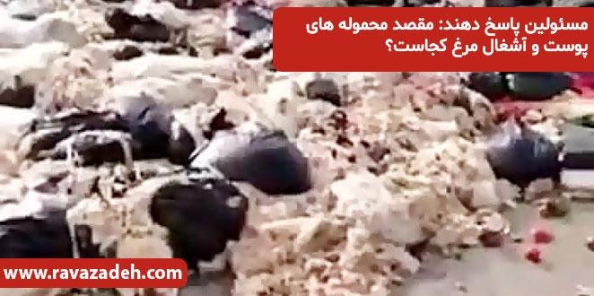 Photo of مسئولین پاسخ دهند: مقصد محموله های پوست و آشغال مرغ کجاست؟