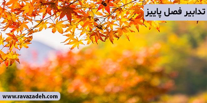 Photo of تدابیر فصل پاییز