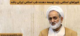 شوراهای اسلامی باید توسعه دهنده طب اسلامی ایرانی باشد