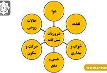 Photo of اسباب ۶ گانه تندرستی از دیدگاه طب اسلامی ایرانی کدامند؟