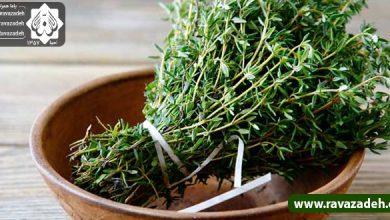 Photo of سبزیهای مفید برای بهبود اضافهوزن، کبد چرب، نفخ معده و روده